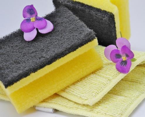 Spring Cleaning Checklist Escondido, CA